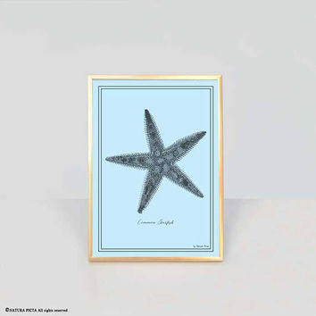 Starfish print-antique starfish print-ocean wall art-seaside print-coastal wall art-coastal decor-beachy print-nautical print-NATURA PICTA