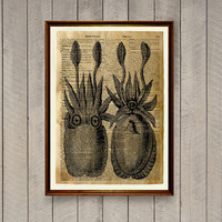 Octopus poster Lodge decor Nautical print WA808