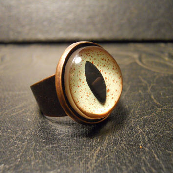 Alligator Reptile Eye Taxidermy Glass Eye Ring by TheCuriositeer