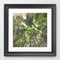 "The trees say ""Hello"" Framed Art Print by The Cathouse"