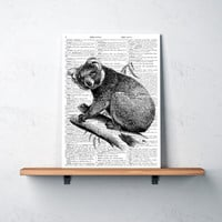 Koala poster Black and white Animal art print Modern home decor TO378-B