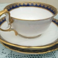 ANTIQUE AYNSLEY EMBOSSED CUP, SAUCER & PLATE (TRIO) c1891 -1910