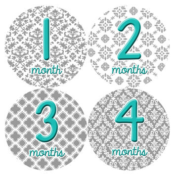 Baby Girl Monthly Milestone Birthday Stickers Style #044