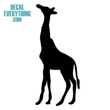 Giraffe Decal - Animal Stickers