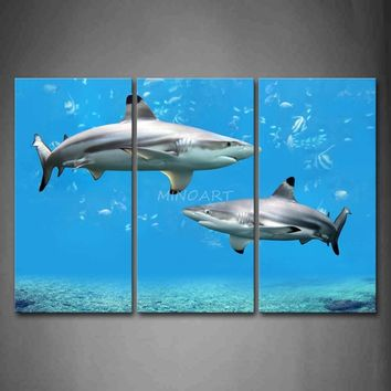 3 Piece Wall Art Painting Two Sharks In Blue Sea Seabed Fishs Print On Canvas The Picture Animal 4 Pictures