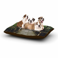 "Chelsea Victoria ""Go Your Own Way"" Nature Green Dog Bed"