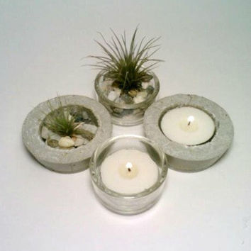 Air Plant Holder, Concrete Air Plant Holder, Glass Tea Light Holder,  FOUR Tillandsia Holders, Candle Holder, Flower Pot