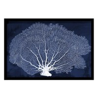 Oliver Gal 'Coral Fan' Framed Cyanotype Art Print,