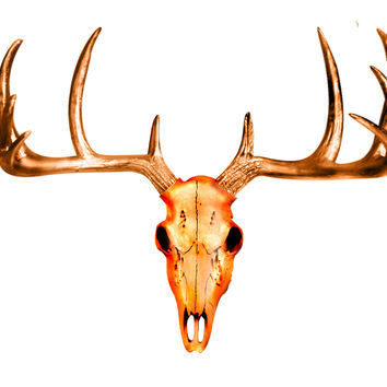 The MINI Bronze Faux Taxidermy Resin Deer Head Skull Wall Mount | Metallic Bronze Deer Head Skull