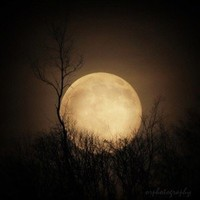 full moon photograph, a celestial night sky 8x8 fine art photograph print