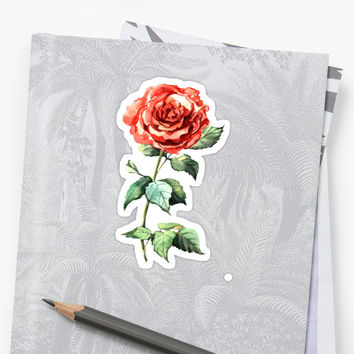 ' Watercolor rose' Sticker by Anna Yudina