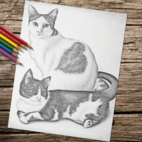Adult Coloring Page, Printable coloring page, Instant download coloring, Two Cats coloring page, coloring page, coloring book for adults