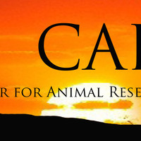 The Center for Animal Research and Education's mission is to provide for a safe, permanent and loving home to exotic animals in need. CARE focuses on excellence in physical and emotional care, advocating animal welfare through education, and conducting min
