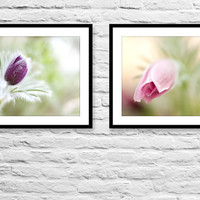 Shabby Chic Flower Photography, Print Set of 2 Fine Art Prints, Pink Purple Cream Cottage Decor Set, Floral Set, Nursery Art, Flower Set