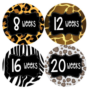 Pregnancy Baby Bump Week Stickers Style #920