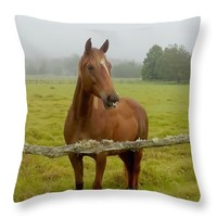 """Hello There Throw Pillow 14"""" x 14"""""""