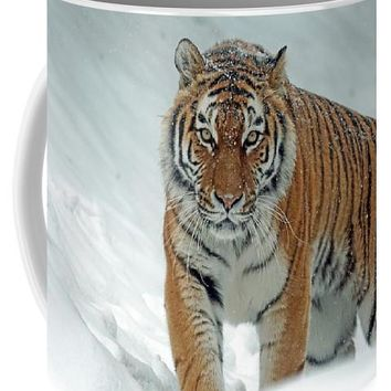 Tiger In Winter - Mug