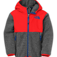TODDLER BOYS' DENALI HOODIE | United States