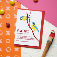 Funny Valentine's Love Card BLUE TITS Naughty Valentine Day Rude Pun Bird Watching Twitcher Nature Lover Geek Valentines Gift Definition