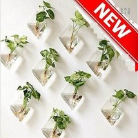 Mkono 2 Pack Wall Hanging Plant Terrarium Glass Planter Diamond House Garden NEW