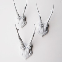 White Faux Taxidermy - Faux Deer Antler Skull Caps - Faux Taxidermy - Set of 3 White Resin Deer Caps - Mounted Deer Antlers