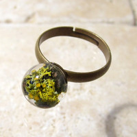 Lichen (Xanthoria parienta) Adjustable Ring, Moss jewellery, Plant Jewelry, woodland, mycology, fungi