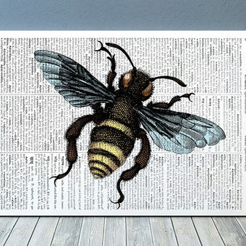 Dictionary print Bee art Insect poster Nature print RTA723