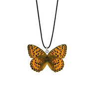 Real Indian Fritillary Butterfly Necklace