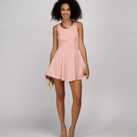 Pink Fine and Dainty Skater Dress