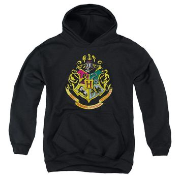 Harry Potter - Hogwarts Crest Youth Pull Over Hoodie