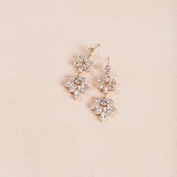 Taryn Crystal Dangle Earrings