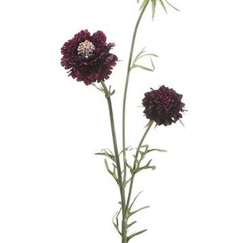"Silk Scabiosa in Eggplant Purple - 28"" Tall"