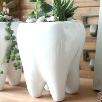 White Ceramic Plant Pot Pen Holder Cute Tooth Shape