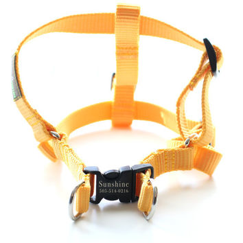 Laser Engraved Personalized Webbing Dog Harness  by shopmimigreen