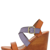 Tone It Up Blue and Tan Wedge Sandals