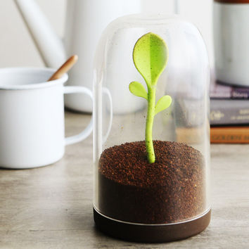 Free Shipping 1Piece Sprout Jar Salt Shaker Tea Leaves Coffee Sugar Storage Container with Spoon
