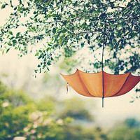 Orange Umbrella  Whimsical  Dreamy  Home Decor   by DreamyPhoto