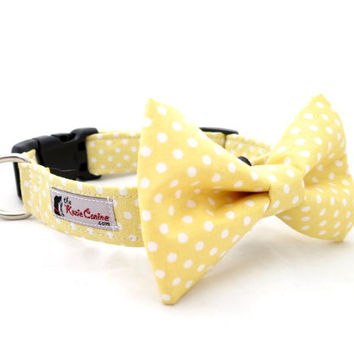 Yellow Polka Dot Dog Collar (Dog Collar Only - Matching Bow Tie Available Separately)