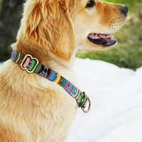 Free People Strawberry Field Collar