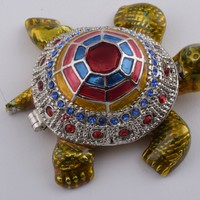 Colorful Shell Turtle