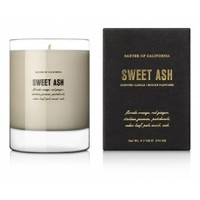 Soy Wax Scented Fragrant Candle - Ash Series: Sweet - Baxter