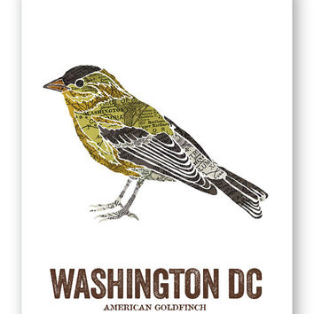 AMERICAN GOLDFINCH // Washington DC Bird, Nature Print, Vintage Map, outdoor, State Poster, Rustic, Outdoor, Country, Reproduction Print