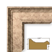 Craig Frames FM97SI 24 by 36-Inch Picture Frame, Smooth Finish, 2-Inch Wide, Distressed Silver / Gold