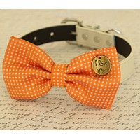 Orange Dog Bow tie attached to dog collar, Pet wedding accessory