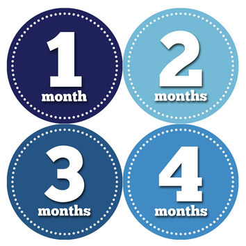 Baby Boy Monthly Milestone Age Stickers Style #339