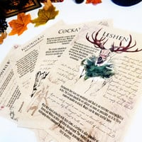 Bestiary: Witcher inspired journal pages. Noonwraith, Cockatrice, Leshen, Drowner