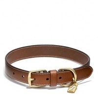 Coach :: Bleecker Leather Story Patch Dog Collar