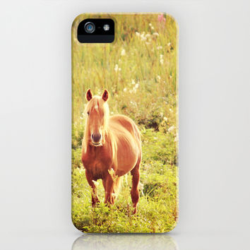 All the Pretty Horses iPhone & iPod Case by Kay Maguire