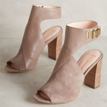 Aerin Maple Shooties