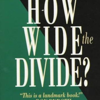 How Wide the Divide?: A Mormon & an Evangelical in Conversation: How Wide the Divide?